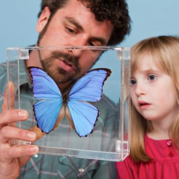 Educator and young learner looking at a butterfly
