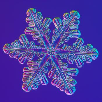 A magnified image of a snowflake