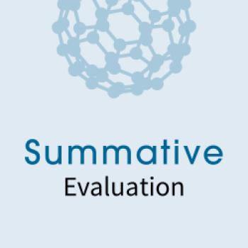 NISE Network Summative Evaluation logo
