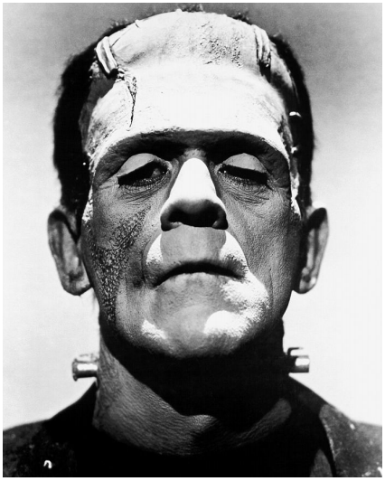 Photograph of Boris Karloff as Frankenstein's monster from Wikimedia Commons. Retrieved from: https://commons.wikimedia.org/wiki/File:Frankenstein%27s_monster_(Boris_Karloff).jpg