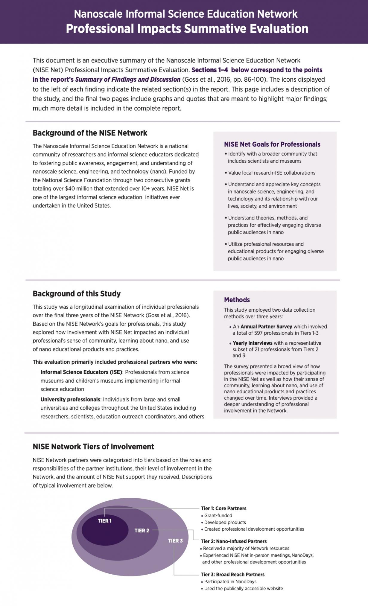 NISE Network Nano Professional Impacts Evaluation executive summary page 1
