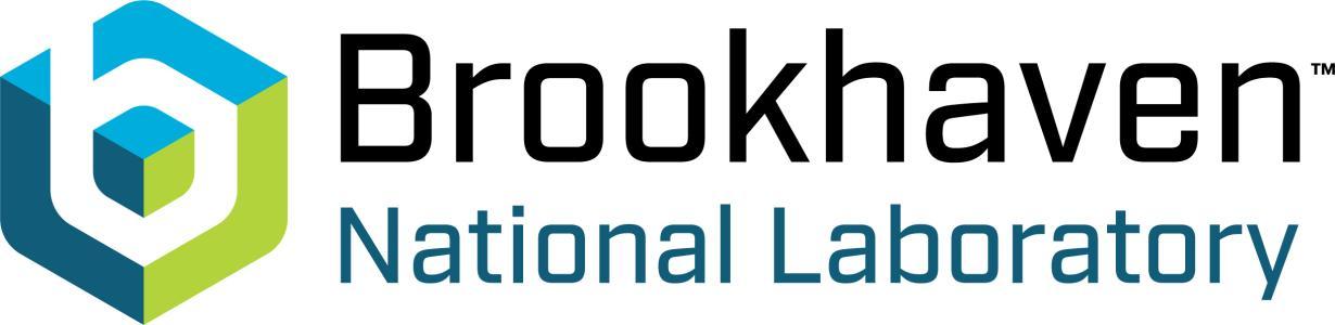 Brookhaven National Laboratory logo