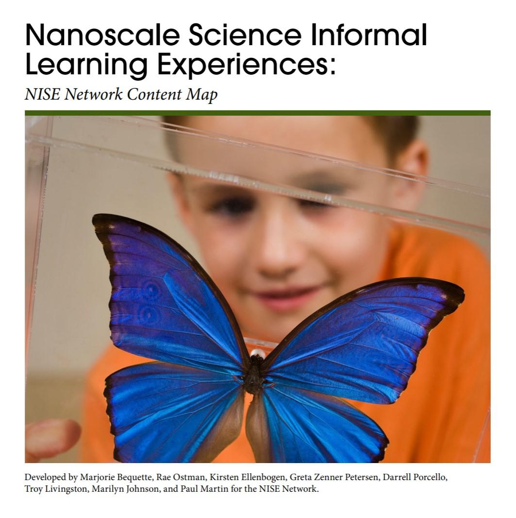 cover image of the nano content map