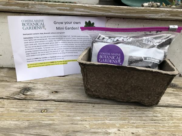 Image of mini-garden starter kits