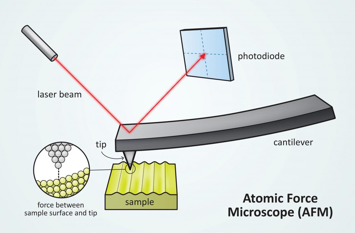 Illustration of an Atomic Force Microscope (AFM) probe tip