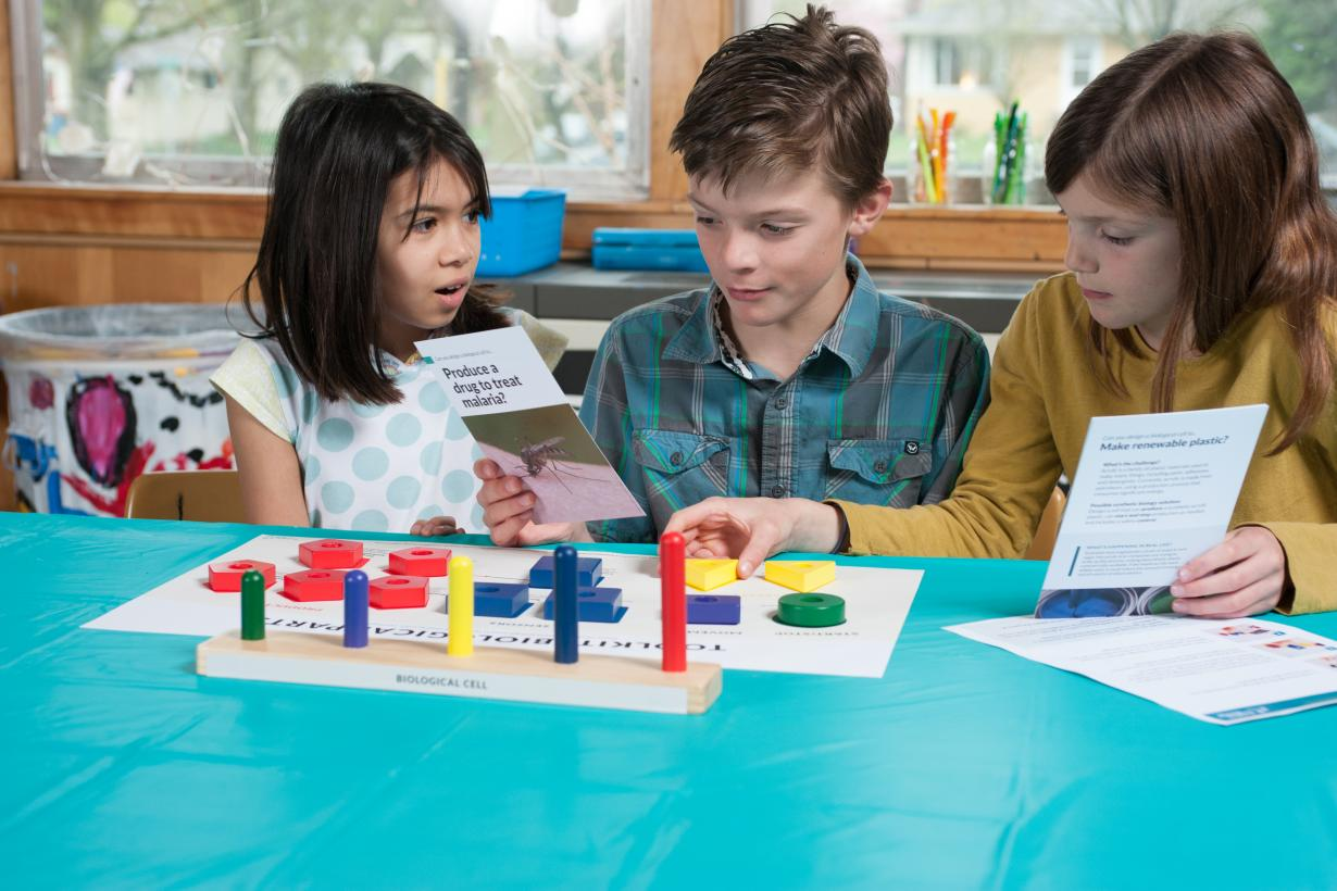 Children using Building with Biology kit of parts activity with colored blocks and cards