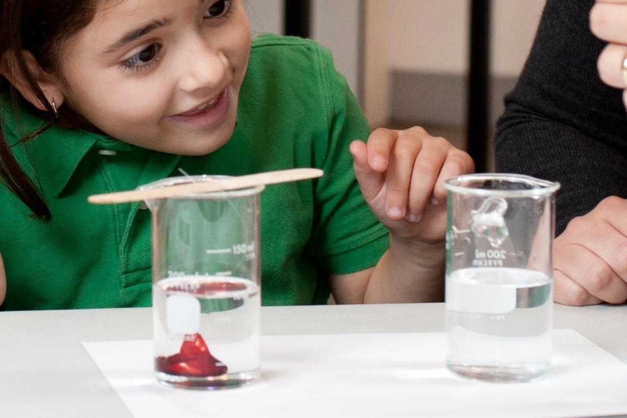 Girl looking at objects in a beaker filled with liquid that appear to be invisible