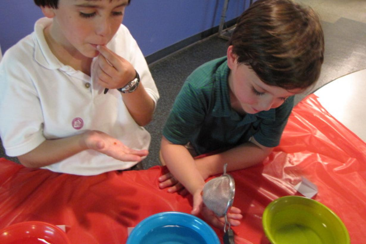 Kids making and tasting gummy worms