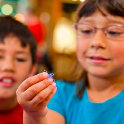 Children using Exploring Fabrication - Gummy Capsules